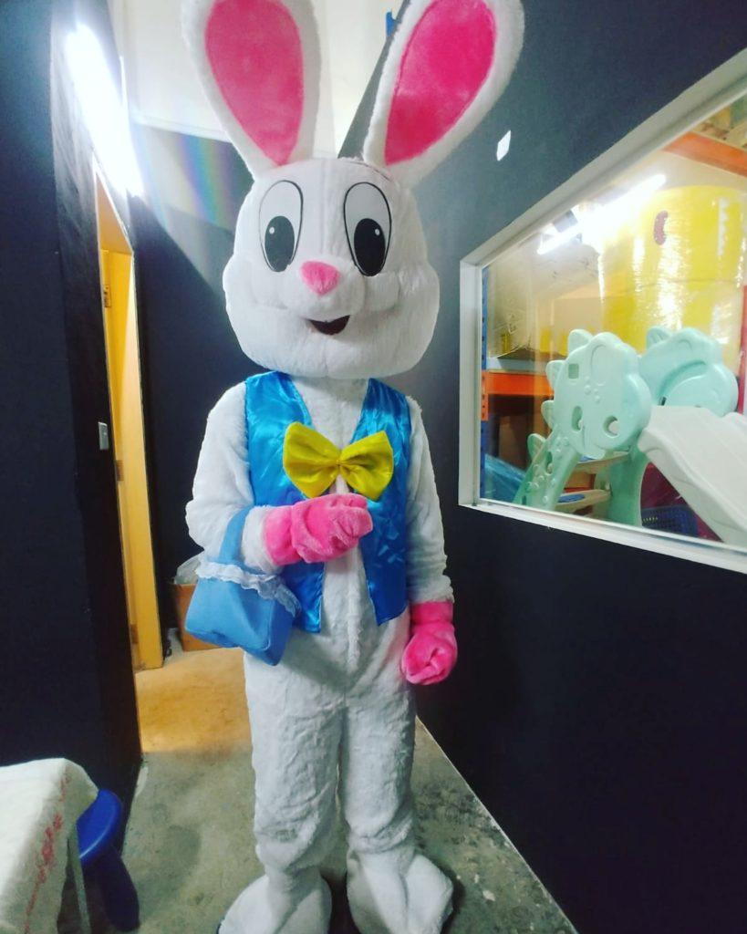 Easter Bunny Rabbit Mascot Singapore